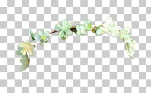 Wreath Crown Portable Network Graphics Flower PNG