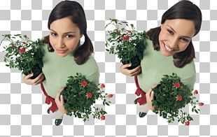 Woman Portable Network Graphics Floral Design Garden Roses JPEG PNG