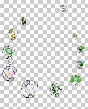 Bubble Plant Designer Computer File PNG