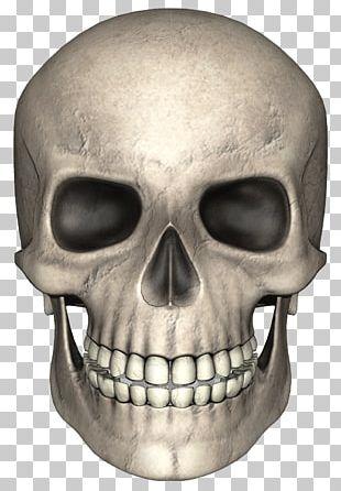 Skull Pixabay PNG