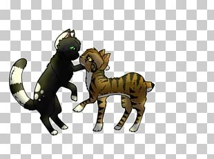 Cat Dog Mammal Canidae Pack Animal PNG