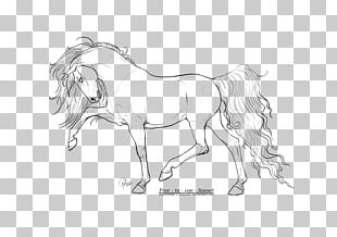 Horse Line Art Drawing Sketch PNG