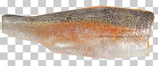 Sardine Fish Steak Oily Fish Salted Fish Trout PNG