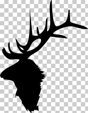 Elk Deer Moose Antler PNG