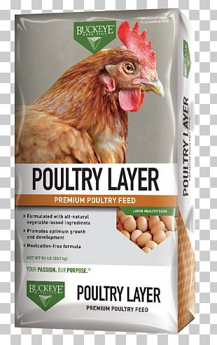Poultry Feed Buckeye Chicken Animal Feed Crumble PNG