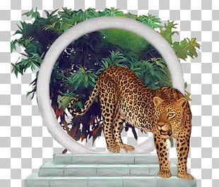 Leopard Felidae Jaguar Blog Cheetah PNG