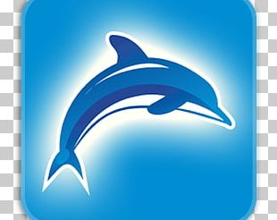 Common Bottlenose Dolphin Computer Icons Font PNG