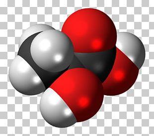 Lactic Acidosis Molecule Hydroxycarboxylic Acid Receptor 1 PNG