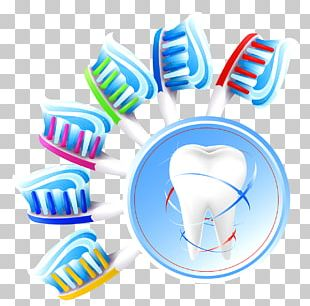 Dentistry Human Tooth Teeth Cleaning PNG