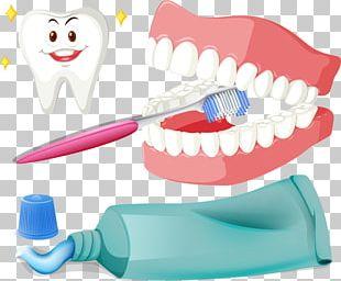 Tooth Brushing Toothbrush Illustration PNG