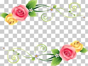 Flower Beach Rose Red Green Pink PNG