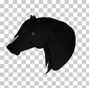 Canidae Mustang Dog Snout Mane PNG