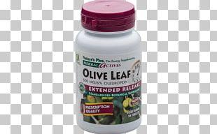 Dietary Supplement Olive Leaf Herb Tablet Valerian PNG