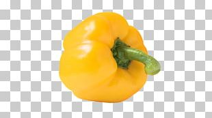 Habanero Bell Pepper Chili Pepper Yellow PNG