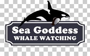 Monterey Bay Sea Goddess Whale Watching Moss PNG