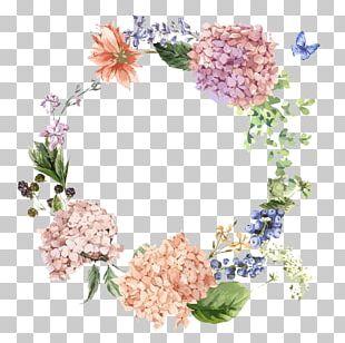 Flower Hydrangea Painting Illustration PNG