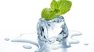 Mint Ice Cube Electronic Cigarette Aerosol And Liquid Water PNG