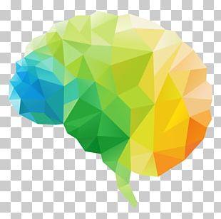 Human Brain Polygon Human Head PNG