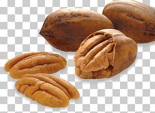 Pine Nut Pecan Almond Tree Nut Allergy PNG