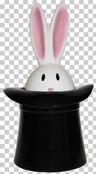 Biscuit Jars Rabbit Biscuits PNG