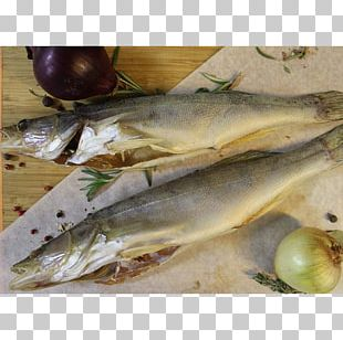 Capelin Fish Products Oily Fish Sardine Mackerel PNG