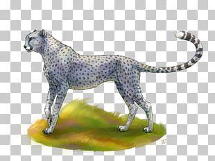 Maltese Dog Cheetah Cat Felidae Ocelot PNG