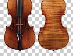 Stradivarius Violin Luthier String Instruments Cello PNG