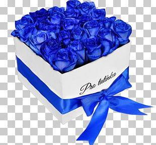 Blue Rose Garden Roses Gift Cut Flowers PNG