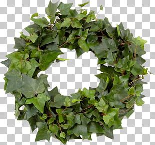 Leaf Wreath Garland Crown PNG