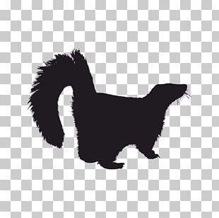 Whiskers Striped Skunks Dog PNG