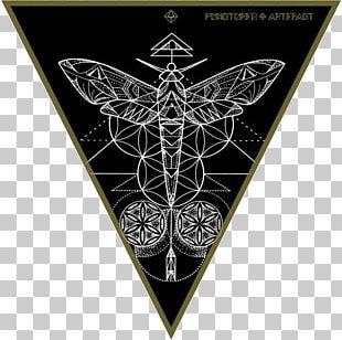 Symbol Sacred Geometry Platonic Solid Tree Of Life PNG