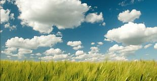 Cloud Computing Climate Model Sky Cloud Storage PNG