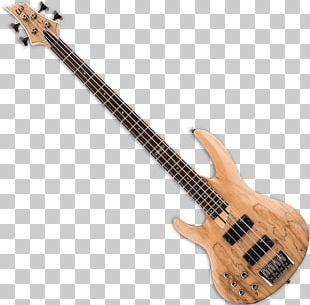 Bass Guitar Musical Instruments Cuatro ESP LTD B205SM PNG