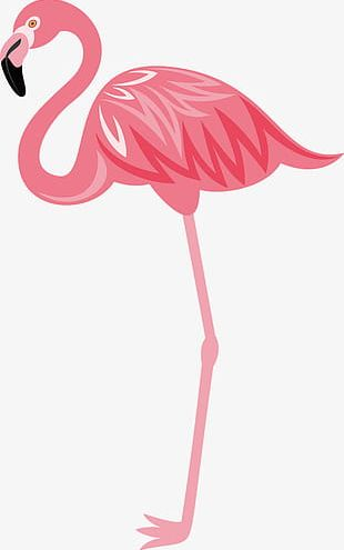 Hand-painted Flamingos PNG