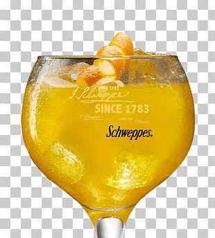 Agua De Valencia Cocktail Garnish Harvey Wallbanger Fuzzy Navel Bellini PNG