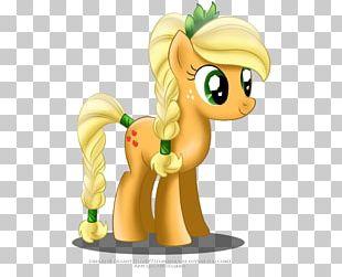 Applejack Pony Rainbow Dash Pinkie Pie Twilight Sparkle PNG