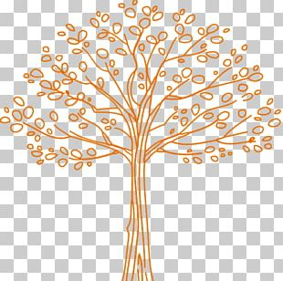 Genealogy Twig Family Tree PNG