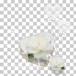 Marriage Wedding Garden Roses Fashion Accessory PNG