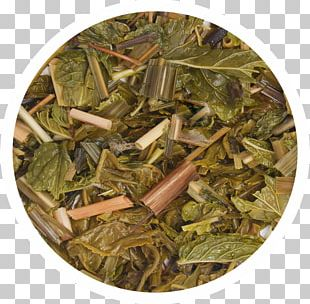 Nilgiri Tea Hōjicha Ingredient Tea Plant PNG