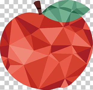 Apple Auglis Fruit Origami PNG