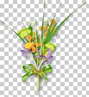 Floral Design Flower Rose PNG