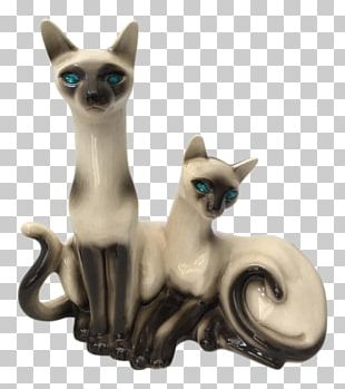Siamese Cat Snowshoe Cat Brno Chair Furniture Television PNG