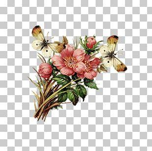 Condolence Book Condolences Sympathy Greeting Card PNG