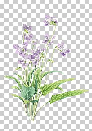 Small Fresh Purple Painted Flowers PNG