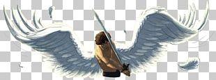 Bird Feather Angelfall Wing Beak PNG