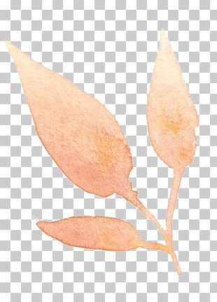 Watercolor Painting Leaf Watercolour Flowers Transparent Watercolor Art PNG