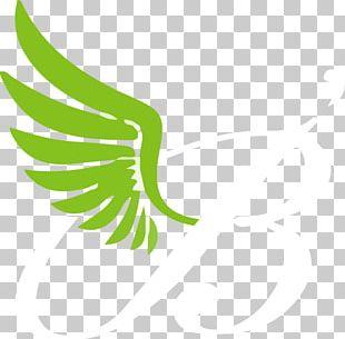 Leaf Logo Plant Stem Beak Font PNG
