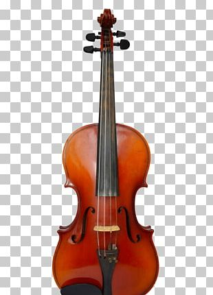 Violin String Instruments Musical Instruments Luthier Cello PNG