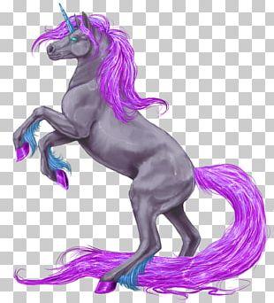Unicorn Horn Gypsy Horse Winged Unicorn Wikipedia PNG