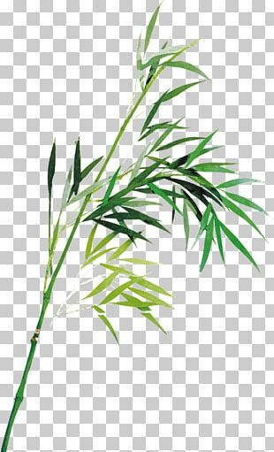 Bamboo Ink Wash Painting PNG